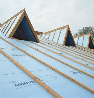 styrofoam-roof-300